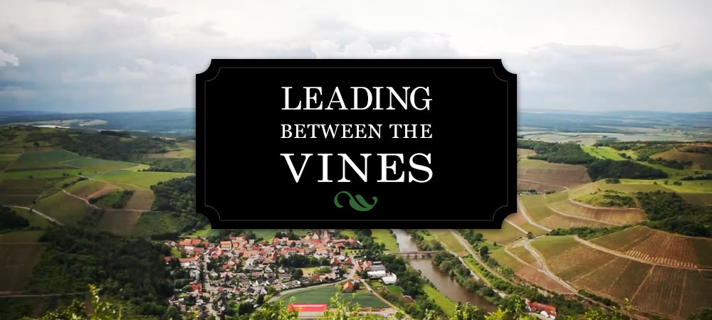 Leading Between The Vines a film by Terry Theise